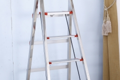 Buy us a Ladder